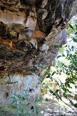 八女津媛神社(4)