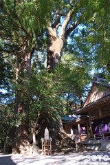 水屋神社(3)