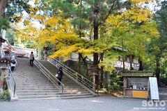 大神神社(苗木)