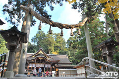 大神神社(拝殿と鳥居)