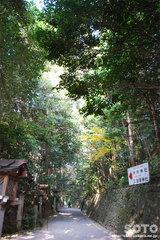 大神神社(くすり道)