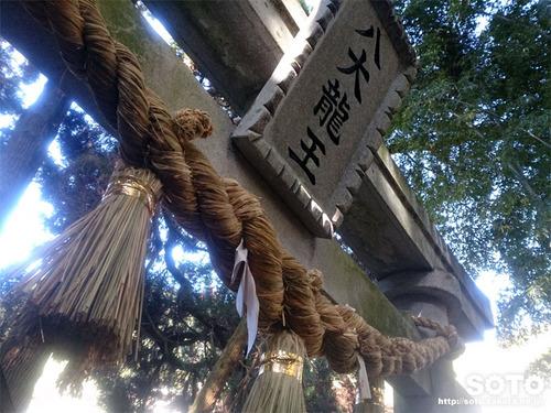 神龍八大龍王神社(2020-1)
