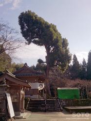 大津山阿蘇神社(5)