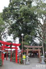 青井阿蘇神社(稲荷神社と宮地嶽神社)