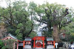 枚聞神社(1)