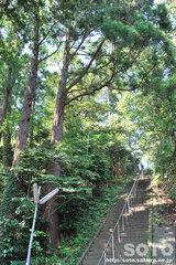 大物忌神社(5)