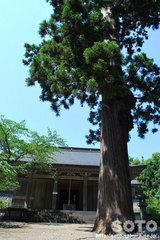 大物忌神社(6)
