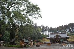 都農神社(2)