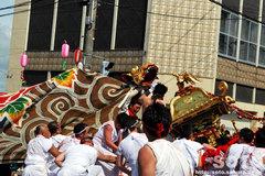 羽幌神社例大祭(本神輿と獅子・2)
