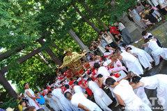 羽幌神社例大祭(鳥居通過)