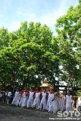 羽幌神社例大祭(本神輿納め)