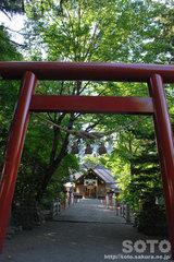 比布神社(2)