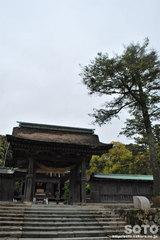気多大社(3)