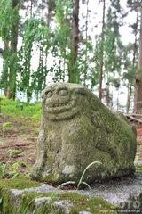 倭文神社(狛犬)