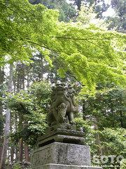 泉神社(狛犬)