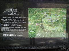 揺ヶ池(4)
