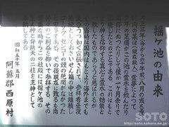 揺ヶ池(5)