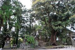 揖夜神社(2)