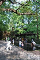 柿原養鱒場(釣り堀)