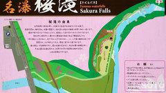 桜滝(案内板)