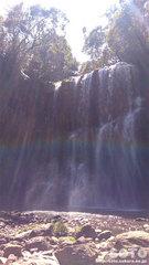 桜滝(3)