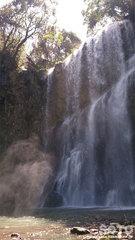 桜滝(4)