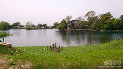浮島水辺公園(2)