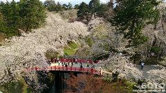 弘前城天守からの眺め(3)