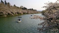 弘前公園の西濠