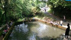 山の神養魚場(釣り堀)