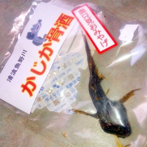 奥只見湖(かじか骨酒)