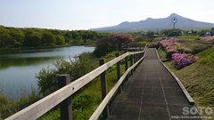 ひょうたん沼公園(2)