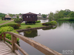 摩周 水郷公園(4)