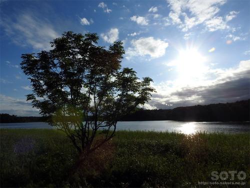 根室の長節湖