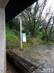 下須島 鶴葉山園地(7)