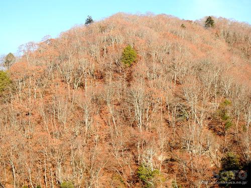 湯西川の山々(2)