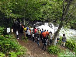 さくらの滝(1)