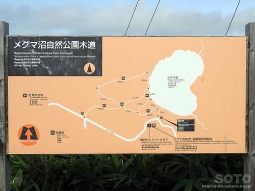 メグマ沼(1)