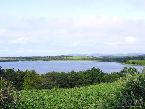 メグマ沼(2)