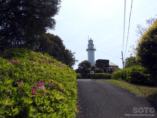 鶴御崎自然公園(灯台)