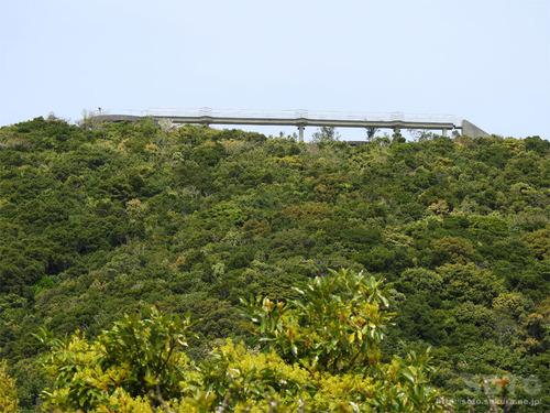 鶴御崎自然公園(展望ブリッジ)