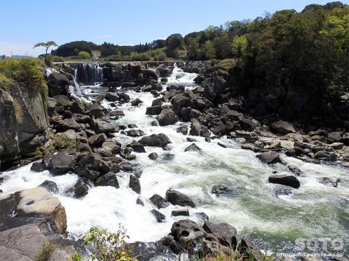 曽木の滝(1)