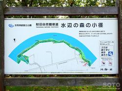 洞爺湖一周(水辺の森の小径/案内板)