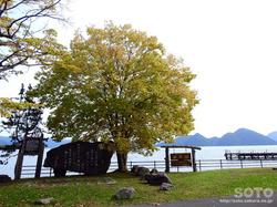 洞爺湖一周(とうや水の駅/中央公園)