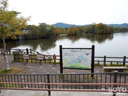 大沼公園(白鳥台セバット)