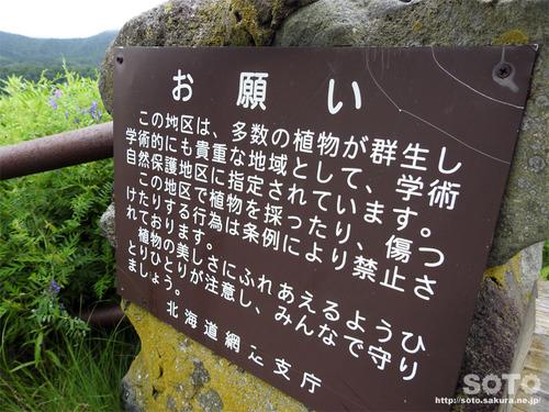 オロンコ岩(16)