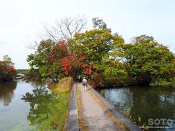 大沼公園(19)