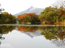 大沼公園(26)