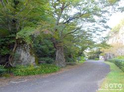 材木岩公園(6)
