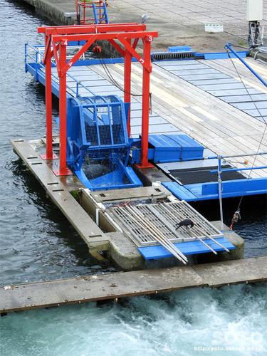 千歳川インディアン水車